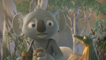 Blinky Bill - De Vliegende Koala