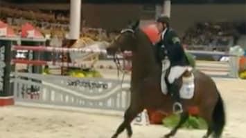 RTL Nieuws Paard valt dood tijdens wedstrijd