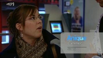Bedrijf In Beeld - Uitzending van 14-02-2010