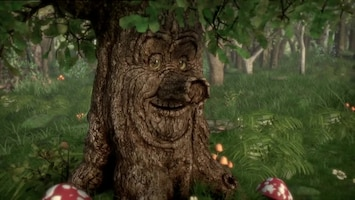 Sprookjesboom De jarenverdraaier