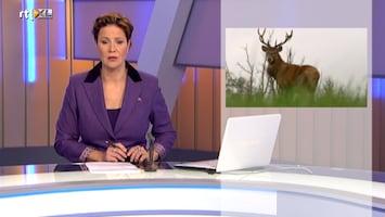 Rtl Z Nieuws - 17:30 - Rtl Z Nieuws - 12:00 Uur /227