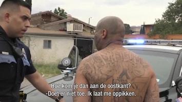 Politie Usa Live - Afl. 1