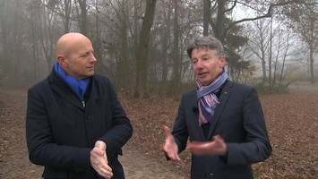 Subsidie biomassa: 'perverse prikkel die onmiddellijk moet stoppen'