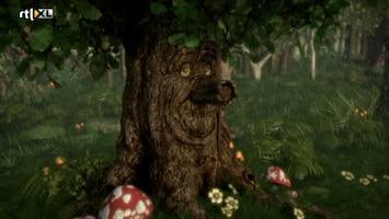 Sprookjesboom - De Weddenschap