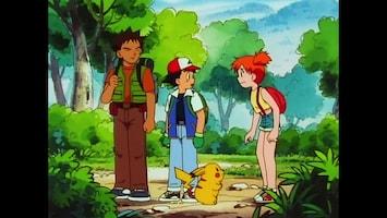 Pokémon - De Waterbloemen Van Cerulean City