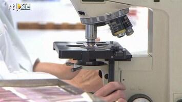 RTL Nieuws Duitsland in ban van EHEC-bacterie