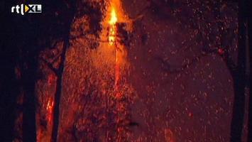 RTL Nieuws Bosbranden in Australië door droogte