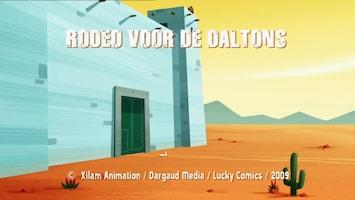 De Daltons - Rodeo Voor De Daltons