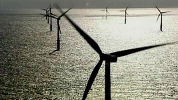 RTL Transportwereld WindCat werkboten