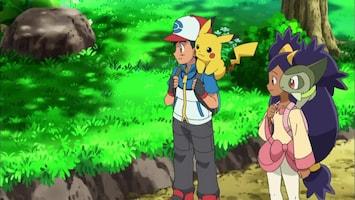 Pokémon - Schoonheden Strijden Om De Pracht En Praal!