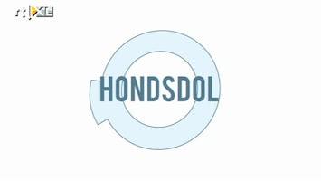 Minute To Win It - Hondsdol