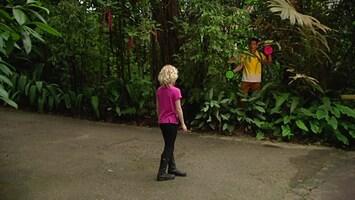 Burgers' Zoo En Waarom - Lisa En De Gifslang
