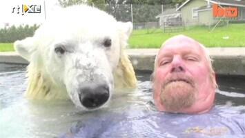 Editie NL Man zwemt met ijsbeer