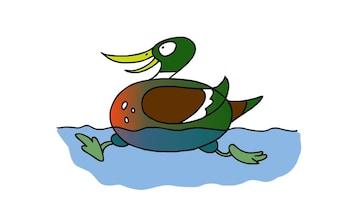 Doodle - Duck