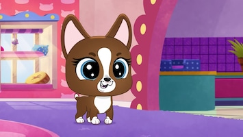 Littlest Pet Shop: A World Of Our Own - Afl. 14