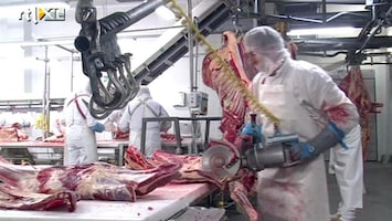 RTL Nieuws Mogelijk vervolging sjoemelaars met paardenvlees