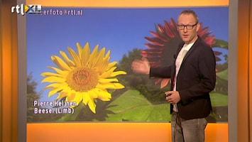 RTL Nieuws Volop zomer, morgen onweer