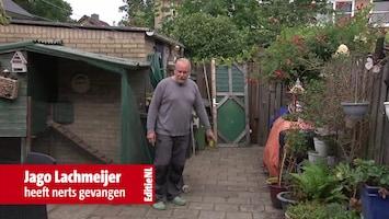 Editie NL Afl. 180