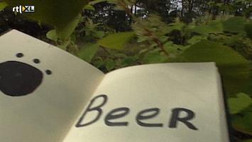 Ernst, Bobbie En De Rest - Vakantie - We Zoeken Het Bos