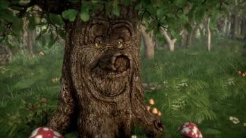 Sprookjesboom Het liedje