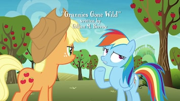 My Little Pony Grannies gone wild