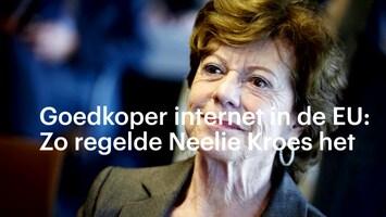 De kruistocht van Neelie Kroes: eindelijk af van roamingkosten