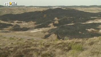 RTL Nieuws Ramptoerisme op verbrand duingebied