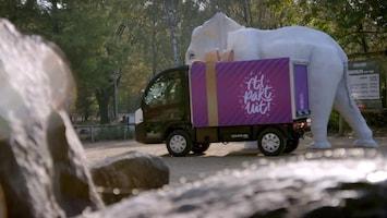 RTL Pakt Uit!