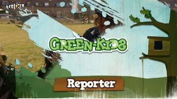 Green-kids Insectenhotel
