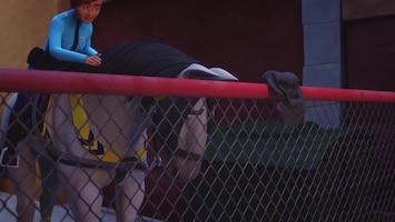LEGO Friends: Girls On A Mission Het beste paard van stal
