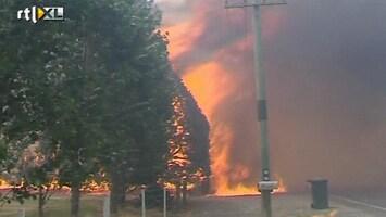 RTL Nieuws Nu ook bosbranden in Nieuw-Zeeland