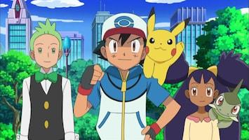 Pokémon - Een Stormloop Van Venipede!