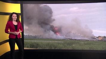 Horrorzomer: waarom zijn er zoveel stalbranden?
