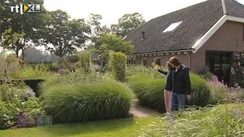 Eigen Huis & Tuin Wat zijn de droomtuinen van Janine ten Horn?