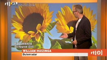 RTL Weer RTL Weer 5 september 2013 08:00uur