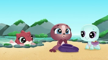 Littlest Pet Shop: A World Of Our Own - Afl. 41