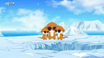 Yoohoo And Friends Yoohoo And Friends /52