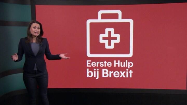 RTL Z's EHBB: Eerste Hulp Bij Brexit