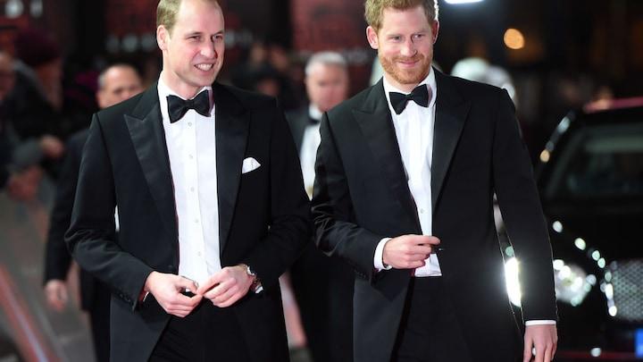 'Wel degelijk bonje tussen prins William en prins Harry'