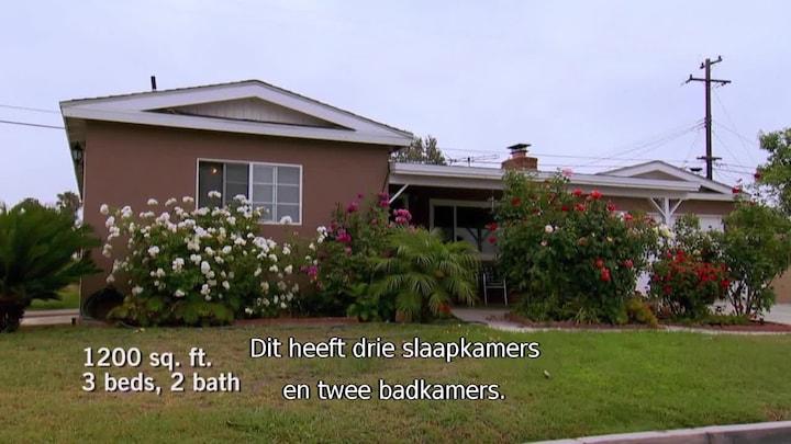 Uitzending gemist   Kopen, Klussen, Cashen, Toxic flip op RTL 8