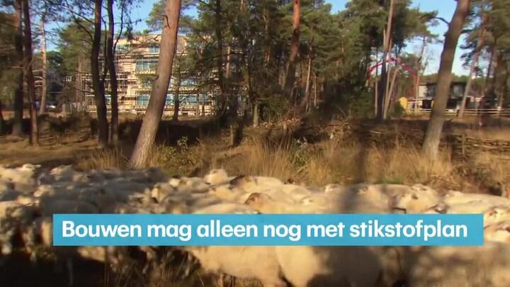RTL Z Nieuws 10:00 uur