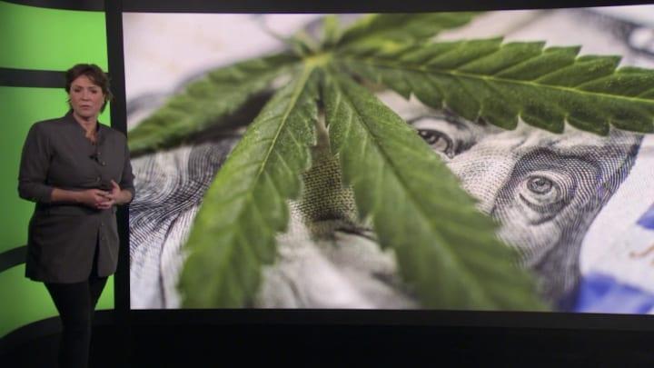 Het groene goud: beleggen in cannabis